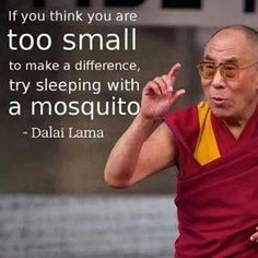"""""""If you think you are too small to make a difference, try sleeping with a mosquito."""" - African Proverb"""
