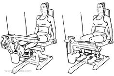 Seated Leg Curls  Adjust the seated leg curl machine to position the footpad just above your heels. Sit upright and engage your abs as you position your legs in front of you. Begin to curly your legs back slowly towards you and flex your calf muscles as you do so. Return to the starting position by extending the legs in front of you again.