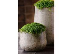 Raphael tapered planter - med D37xH51cm - Categories