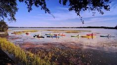 Come kayak with us here in Beaufort, SC!  compliments beaufortsc.org