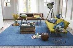 blue carpet room - Google Search