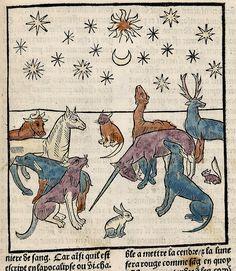 Unicorn and animals. Ars Moriendi. Paris France 1453. LOC