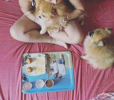 Bandeja personalizada con fotografía ideal para desayunar acompañada de los tuyos o para las meriendas de los más pequeños.