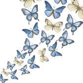 As borboletas aquarela voadora-acima. Vector Vetores De Stock Royalty-Free