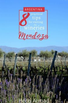 8 practical tips for visiting the wineries in Mendoza No visit to Mendoza without visiting the wineries of Mendoza. These 8 practical tips will help you get the most out of your visit to the wineries in Mendoza - Becci Abroad Different Types Of Wine, Argentina Travel, Beach Trip, Beach Travel, South America Travel, Family Travel, Group Travel, Travel Alone, Travel Abroad