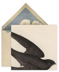 john derian, @Jonathan LeBlanc Lets put a f*ing bird on that sh*t.#Repin By:Pinterest++ for iPad#
