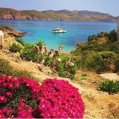 Heaven is a place on earth☀️ #Beach#nature#Mykonos #MyColourOfSummer