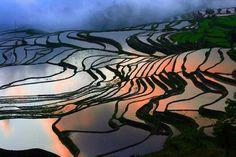 Посмотреть на рисовые террасы в Китае приезжают путешественники со всех стран. Зрелище, восхищающее в любой период. С ноября по апрель можно увидеть залитые водой поля. На водной глади отражается небо и солнце, облака и луна.