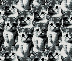cats fabric by susiprint on Spoonflower - custom fabric