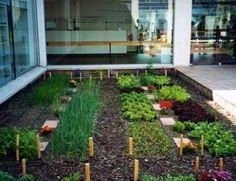 105 Mejores Imágenes De Huerto En Casa Edible Garden Potager