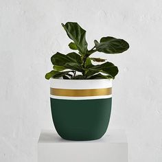 SIZES Extra Small - 28cm (diameter) x 28cm (height)Small - 34cm (diameter) x 35cm (height)Medium - 41cm (diameter) x 43cm (height)Large - 50cm (diameter) x 52cm (height) Our pots are all lovingly hand painted in our Sydney store and workshop. Each pot is Hand painted to order and we use paint that is perfect for interior and exterior use. It is recommendedto leave plants in their plastic container pots and avoid planting directly into our large lightweight pots. It willmake watering…
