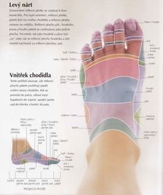 Acupressure More Effective Than Physical Therapy - Acupuncture Hut Acupressure Treatment, Acupuncture, At Home Workout Plan, At Home Workouts, Foot Reflexology, Palmistry, Healthy Lifestyle Tips, Perfect Body, Physical Therapy