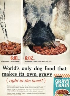 Mini Schnauzer in1961 Gravy Train Dog Food ad