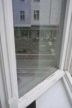 Fensterputzen - die besten Tipps bei Rosanisiert