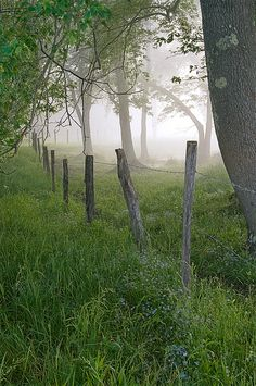 cades cove tenn.. My very favorite place on Earth.  Pure magic. Imagine the stories have have been lived there...