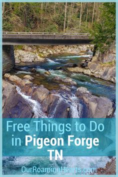 Our comprehensive list of free things to do in Pigeon Forge TN. You will not want to miss any of these so plan accordingly to visit them all! #ourroaminghearts #tennessee #frugaltravel #familyattractions #pigeonforge #thingstodo | Things to do in Pigeon Forge | Tennessee Travel | Frugal Travel | Free things to do | National Parks | Things To Do Alone, Free Things To Do, Pigeon Forge Tennessee, Pet Travel, Travel With Kids, Frugal, City Photo, Stuff To Do, National Parks