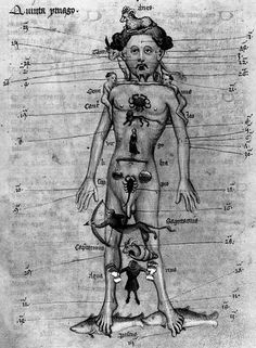 Acupuncture is Astrology with needles. ***MOST FASCINATING ARTICLE ON ACUPUNCTURE YET***