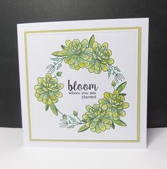 Happy Succulents and Originally Organic. Card By Sarah Gray for Uniko