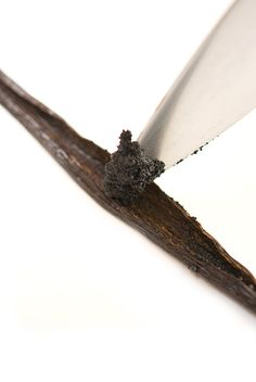 Buying vanilla beans in bulk will save you money. From Madagascar to Tahiti, we offer the widest selection of vanilla bean varieties from around the world. Vanilla Extract Recipe, Vanilla Recipes, Cream Recipes, Baking Tips, Baking Recipes, Madagascar Vanilla Beans, Seared Tuna, How To Make Pesto, Truffle Oil