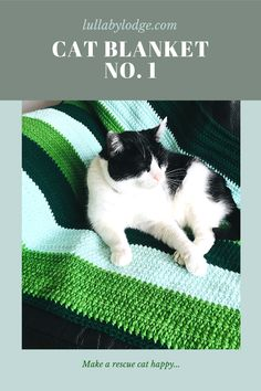 Free blanket pattern designed especially for rescue cats. Great stash busting project, can be made with yarn you already have. Hand Knit Blanket, Make Blanket, Dog Blanket, Afghan Blanket, Knitted Blankets, Free Crochet, Crochet Top, Crochet Ideas, Dream Blanket
