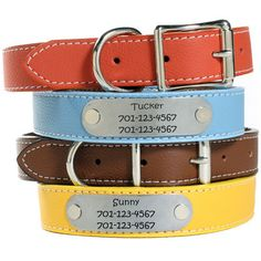 Personalized Designer Italian Leather Dog Collars - Fits necks as small as 6 inches! Engraved with personal information. $49 at www.dogids.com