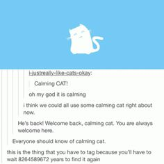 Calming Cat - FunSubstance.com