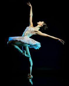 Marlen Fuerte Castro  Principal Dancer Victor Ullate Ballet... Guest Artist In Ballet of Canadá And Laussanne.