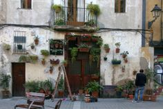 fachada plantas born