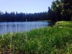 Duncan Lake, Burgess Junction, Wyoming