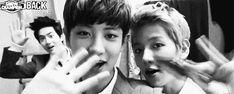 exo gif. Chanyeol's flying kiss with Baekhyun:* Lol Suho creepin in the back