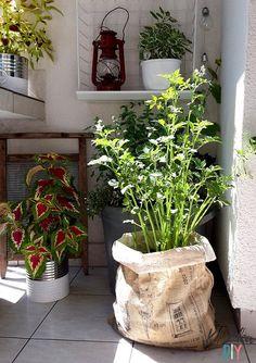 Balkon zero watse - pomysły diy Small Space Gardening, Small Spaces, Zero, Planter Pots, Diy, Balcony, Bricolage, Do It Yourself, Homemade