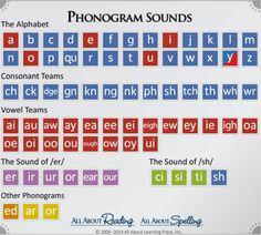 Homeschool Reading and Spelling Curriculum, Programs Phonics Chart, Phonics Rules, Phonics Lessons, Phonics Reading, Teaching Phonics, Teaching Reading, Reading School, Teaching Aids, Reading Intervention