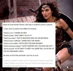 Wonder Woman is a wonderful woman. Goodbye Brother, Wonder Woman Movie, Wonder Woman Funny, Wonder Woman Quotes, Wonder Women, Justice League, Nananana Batman, Dc Memes, Funny Memes