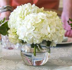 hydrangea table centerpiece - Google Search