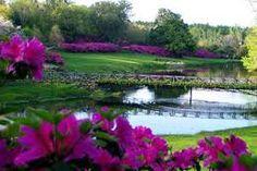 bellingrath gardens alabama - Google Search