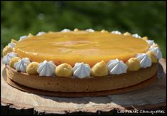 Tarte mangue passion 8.jpg