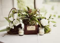 Woodland theme centerpiece. Katy Cook Photography – The Blog » Blog Archive » Lake Toxaway Wedding Photographer – Ali and Charles part II