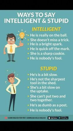 ways to say 'Intelligent' and 'stupid' in English. D'autres manières de dire intelligent et stupide en anglais. English Vocabulary Words, English Idioms, Learn English Words, English Phrases, English Study, English Lessons, English English, English Grammar Rules, English Language Learning