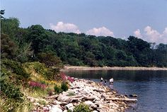 Take a break at Moose Point State Park to enjoy an afternoon picnic and the views of Penobscot Bay. Located off US Route 1, Moose Point is a popular place for travelers along this scenic coastal route.  Hiking trails, hunting, tidal pools.  Maine