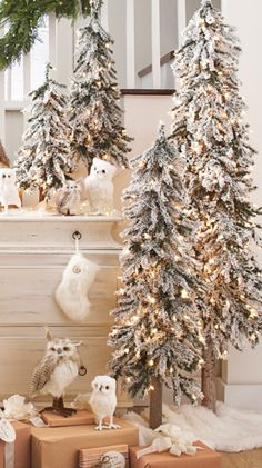 The lifelike frosted foliage of our Snow-tipped Pre-lit Alpine Trees provides instant wintertime charm.