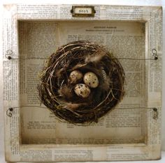 ~Old book papers on frame or shadow box, or lining /