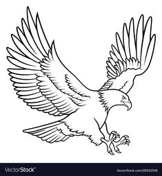 Bald Eagle silhouette isolated on white. Hand drawn sketch of an american eagle. - Bald Eagle silhouette isolated on white. Hand drawn sketch of an american eagle. This vector illust - Bird Drawings, Easy Drawings, Eagle Drawing Easy, Adler Silhouette, Bald Eagle Tattoos, Tattoo Eagle, Tattoo Owl, Hawk Tattoo, Wing Tattoos