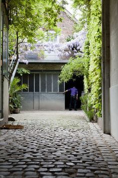 Cobble stones and wisteria