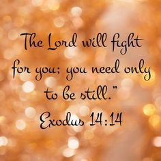 Thank you Lord Jesus Christ. Praise the Lord, our almighty God. Biblical Verses, Prayer Scriptures, Bible Prayers, Faith Prayer, Prayer Quotes, Bible Verses Quotes, Faith In God, Spiritual Quotes, Prayer Books