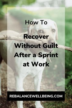 Sprint-Recover is a great work-life balance tip because it creates self-empowerment to push and to rest. Read this post to start overcoming the guilt of working too much and balance work and home (and let go of working mom guilt). #RebalanceWellbeing #worklifebalance #worklife #stress #stressmanagement Working Mom Quotes, Working Mom Tips, Working Too Much, Work Life Balance Tips, Legitimate Work From Home, Self Empowerment, Stress Management, Way To Make Money, Hustle