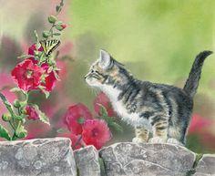 Magnifiques illustrations de chats by Susan Bourdet - BONHEUR DE LIRE
