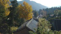 北京潭柘寺 Beijing Tanzhe Temple