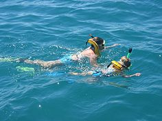 Keys Diver Snorkel Tours Key Largo Florida