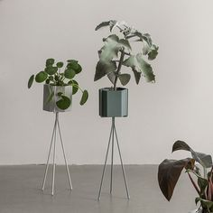 Purchase the latest range of Ferm Livings contemporary and minimalist plant stands in grey. These plant stands are made of iron with powder coating.