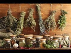 Secado correcto de hierbas medicinales